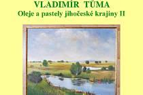Výstava Vladimíra Tůmy.
