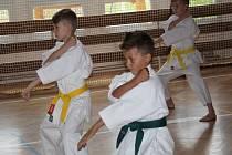 Ukázka SKP karate Písek na ZŠ J. K. Tyla Písek.
