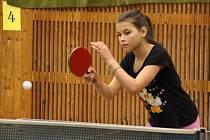Fotografie je z letošního turnaje žactva v Kovářově.