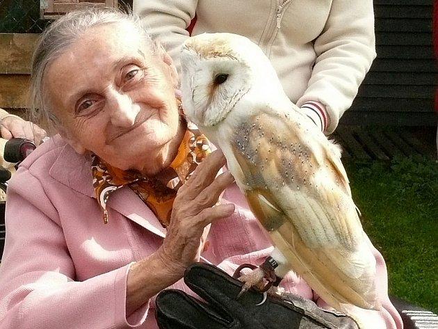 Na snímku  Jarmila Sluková  v doprovodu ošetřovatelky Hany Kůsové si vzala na rukavici  sovu pálenou.