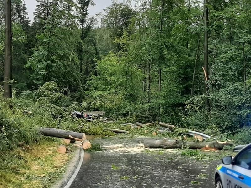 U Čížové na Písecku zabil spadlý strom dva lidi v autě.