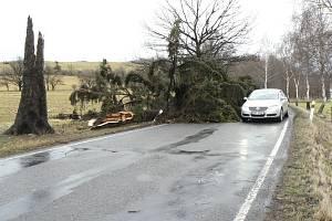 Poblíž křižovatky u hlavní silnice Písek - Protivín ve směru na Tálín museli řidiči objíždět zlomený mohutný jehličnan.