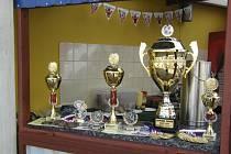 Také v letošním ročníku mezinárodního turnaje KOČÍ CUP budou mladí fotbalisté ze šestnácti týmů bojovat v Písku o krásné poháry, medaile a další ceny.