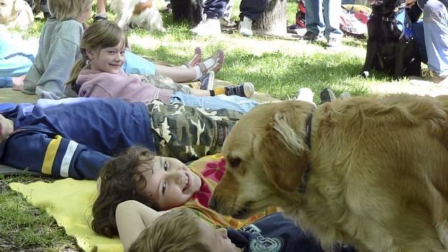Psi jako léčitelé - Sdružení Hafík připravilo ukázku canisterapie.