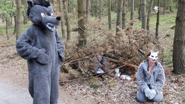 Pohádkový les v Oslově.