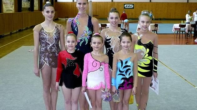 Moderní gymnastky Proactive Milevsko: V horní řadě stojí (zleva): Petra Korytová, Lucie Tollingerová, Alena Andělová, Adriana Havlíková. V dolní řadě: Denisa Plochová, Natálie Křížová a Karolína Kreisslová.