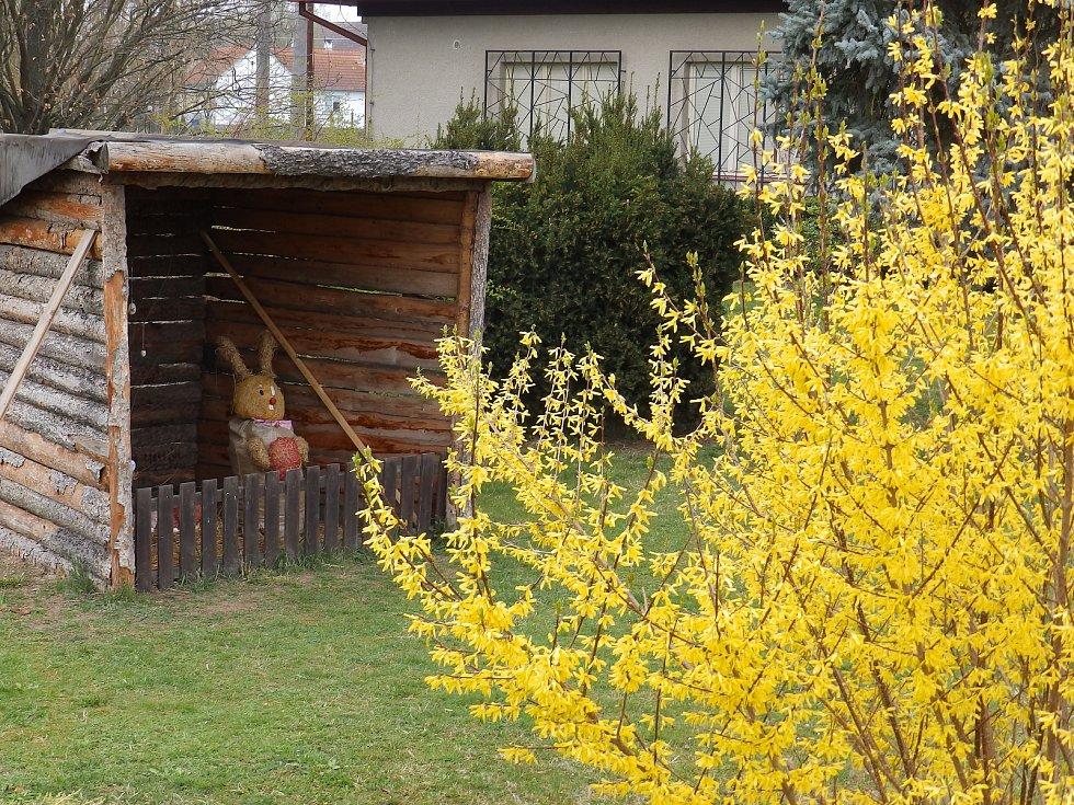 Přípravy na Velikonoce v Oslově.