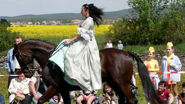 DEN KONÍ. Pro všechny milovníky koní připravilo OS Dámy v sedle již 5. ročník akce Den koní v Líšnici u Sepekova.