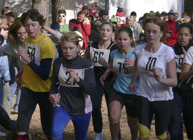 Na snímku jsme zachytili na trati dívky kategorie žákyně starší (roč. 1993 - 1994) při absolvování závodu na 800 metrů, který se konal v rámci 83. ročníku lesního běhu Kolem Ameriky v Písku.