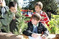 VĚTVIČKY STROMŮ. Páťákům  z 1. základní školy Vítu Kučerovi, Františku Čechmánkovi a Pavlu Hrochovi už v testu zbývá vyplnit posledních  sedm otázek. Týkají se poznávání větviček stromů.