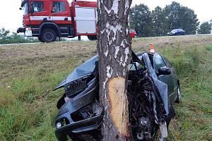 Vážná dopravní nehoda u Selibova na Písecku. Při nárazu auta do stromu se vážně zranila řidička.