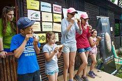 Den dětí v Protivíně.