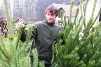 Michal  Maňhal, pracovník Lesů města Písku, připravuje před hajnicí Jarník stromky na prodej. Ten začne ve čtvrtek.