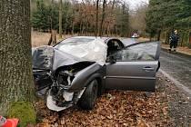 Na Písecku zemřela řidička po nárazu do stromu.