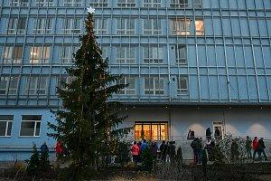 Vánoční strom před Psychiatrickou nemocnicí Písek