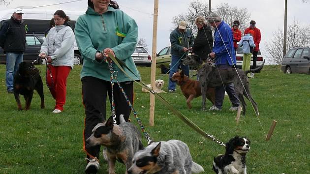 Pátý ročník setkání a závodů psů a jejich přátel Běhochod u Čížové