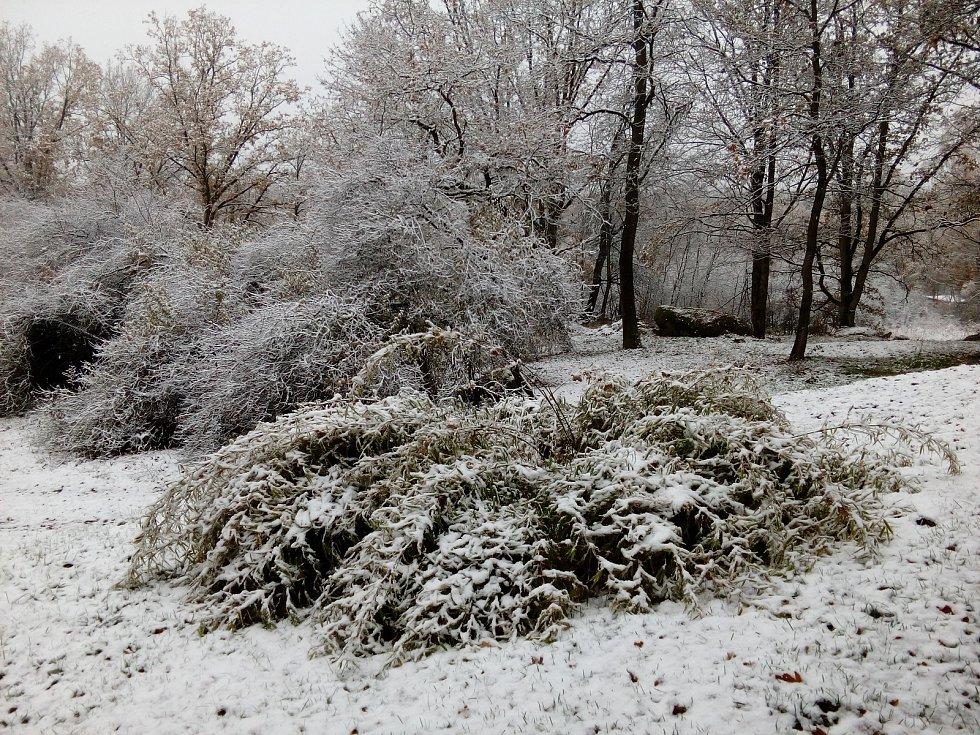 Ráno ve středu 13. listopadu na Kovářovsku.
