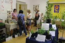 Výstava léčivých rostlin v Písku.