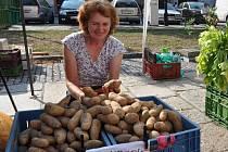 NA TRHU.  Marie Černá v pátek prodávala ve stánku  na píseckých Bakalářích a v nabídce měla také brambory.V TRŽNICI.  Marie Černá včera prodávala ve stánku  na píseckých Bakalářích a v nabídce měla také brambory.