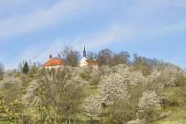 Kostel sv. Jakuba v Čížové.