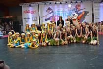 Choreografie zipáků na soutěži v J. Hradci