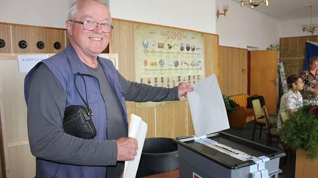 Volby do Evropského parlamentu v Čížové.