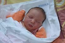 Anna Vojíková zProtivína. Dcera Kláry a Jana Vojíkových se narodila 17. 2. 2020 v17.53 hodin. Při narození vážila 3800 g a měřila 51 cm. Doma ji čekal bráška Honzík (7).
