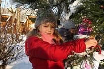 Na fotografii je při zdobení stromečku pro zvířátka Jana Malkusová.