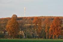 Po ránu mlhavo a odpoledne slunečno, takový je zatím listopad.