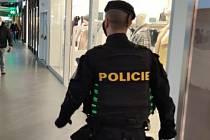 Policejní kontroly v době nouzového stavu. Ilustrační foto.