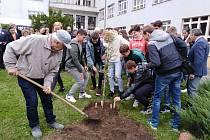 V Milevsku oslavili 85. výročí založení školy T. G. Masaryka a zasadili Lidickou hrušeň.