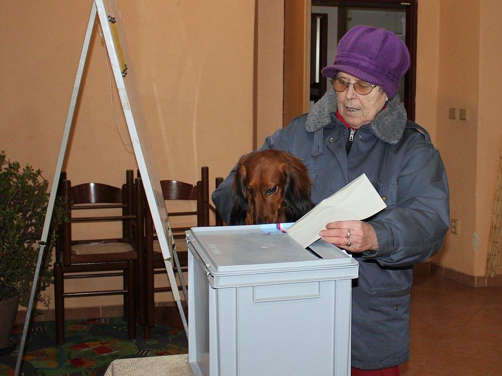 Volby ve Zvíkovském Podhradí.