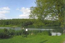 Rybník Starý u Nové Vsi.