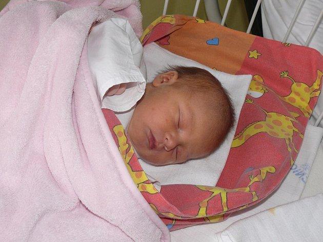 Laura Plecitá, Písek , 8. 1. 2011  ve 08.30  hodin, 3600 g, 49 cm.