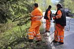 Pracovníci Správy a údržby silnic Prachatice uklízejí na silnici z Prachatic na Vitějovice popadané větve po páteční sněhové kalamitě.