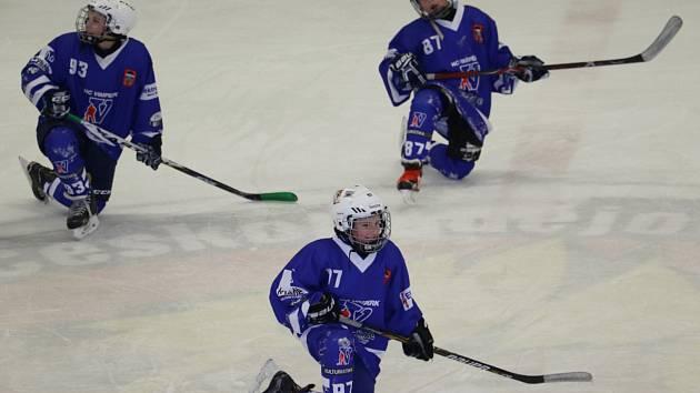 Mladší žáci HC Vimperk zvítězili na ledě Lvů ČB 7:1.