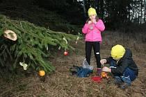 Ani v letošním roce neporušili členové i příznivci Fischer Ski klubu Šumava Vimperk tradici zdobení vánočního stromu pro zvířátka v údolí Křesánovského potoka na Vodníku. A nechyběl ani zpěv koled.