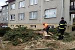 Ve středu dopoledne pokáceli prachatičtí profesionální hasiči rozdvojený smrk mezi bytovkami v ulici Na Sadech. Strom rostl v těsné blízkosti jedné z bytovek.