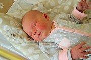 Tereza ŠTĚPÁNKOVÁ, Prachatice. Narodila se v prachatické porodnici v pondělí 5. listopadu v 9 hodin a 6 minut. Vážila 3660 gramů. Má sestřičku Viktorii (3 roky).Rodiče: Pavla a Lukáš Štěpánkovi.
