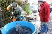 Předvánoční prodej ryb na Prachaticku.