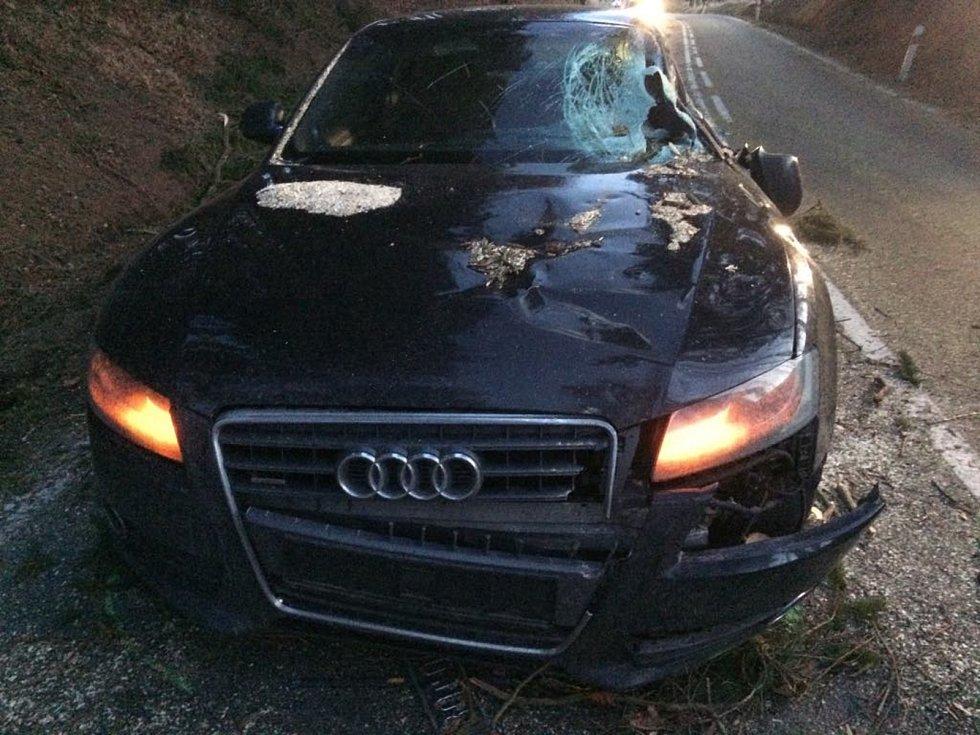 Jen pár set metrů na Prachaticemi, na silnici na Libínské Sedlo, spadl na Audi strom. Jeho řidička utrpěla lehká zranění.