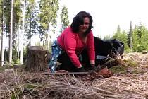 Do sázení stromků se zapojila také Jana Neubauerová z Kvildy.