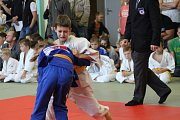 Mladí judisté se představili na VC Prachatice v rámci mezinárodního projektu Judo & Art.
