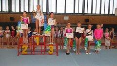 Gymnastkám se ve Veselí nad Lužnicí zadařilo.