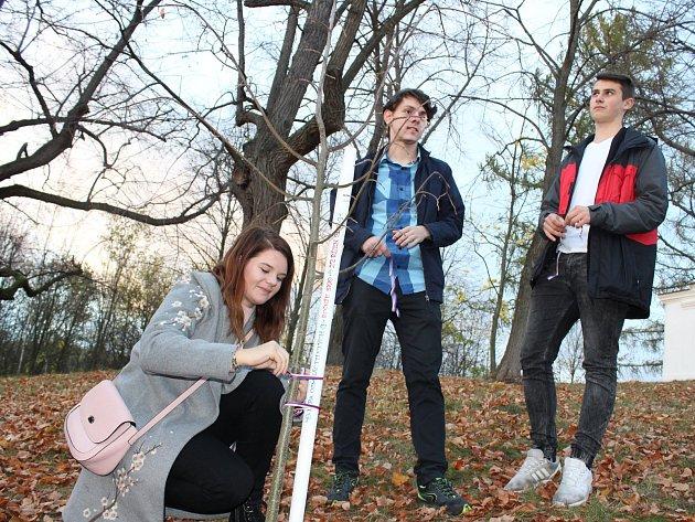 Další osmnáctiletí obyvatelé Vlachova Březí si vpátek vysadili vlastní lípu. Předcházelo tomu slavnostní setkání se starostou obce a prohlídka rekonstruované sokolovny.
