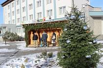 Vánoční strom ve Volarech je na svém místě. Rozzáří se v neděli 3. prosince.