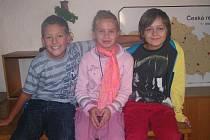 Na naše otázky odpovídali devítiletí žáci čtvrté třídy Základní školy v Netolicích, konkrétně Petr Borovka, Lenka Stehlíková a Jakub Mikeš.