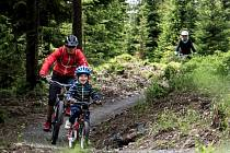 Místo, kde si na horských kolech zajezdí děti i dospělí si vytipovala skupina nadšenců z Prachatic. Trať vzniká u Fefrovských rybníků.