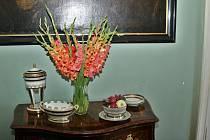 Prohlédněte si sbírku váz. Ilustrační foto