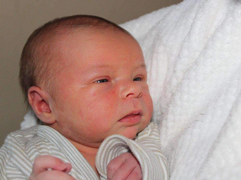 V Útěšově u Bavorova bude vyrůstat Ella Jarošová, která se narodila v prachatické porodnici v pondělí 5. února deset minut po deváté hodině ráno. Sestřičky prvorozené holčičce rodičů Gabriely Sveykovské  a Václava Jaroše navážily 3300 gramů.